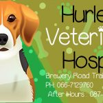 Hurleys Veterinary Hospital Brewery rd Tralee